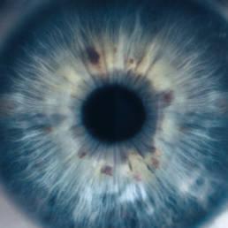 eye iris macro